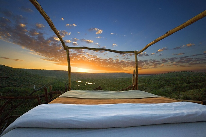 View of the wilderness from your skybed
