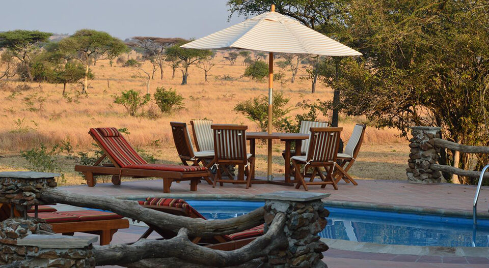 View of the Serengeti from the pool